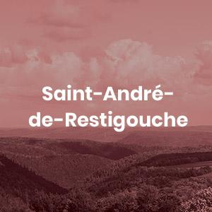 Bouton Saint-André-de-Restigouche